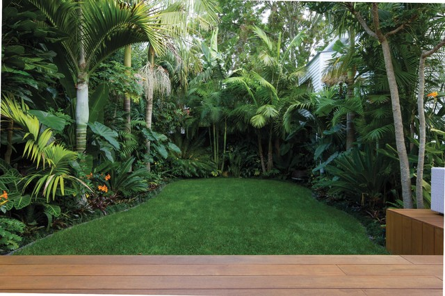 A tropical garden landscape introducing flow tropical for Landscaping auckland