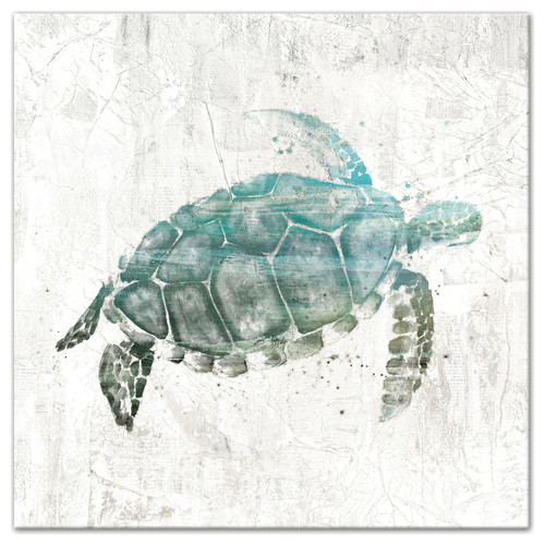"Turquoise Sea Turtle Canvas Wall Art, 24""x24"""