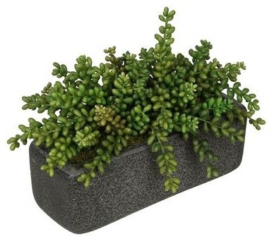 Artificial Sedum Garden In Black Sandy Texture Rectangle Contemporary  Artificial Plants And