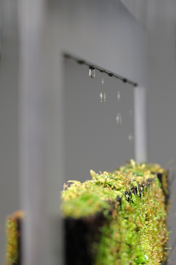 Detail Wasserkreislauf