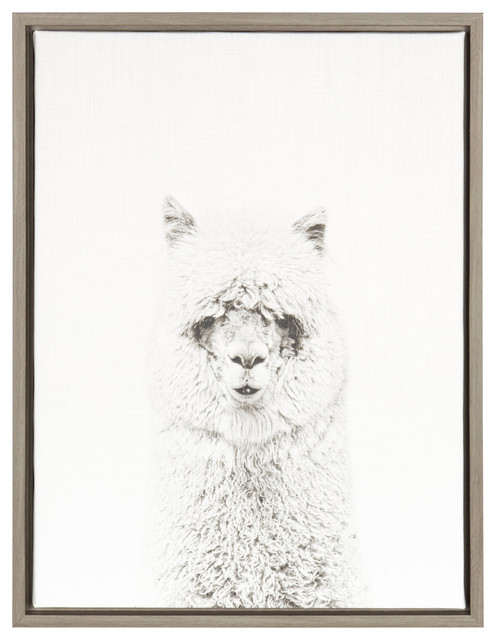 Sylvie Hairy Alpaca Gray 18x24, Framed Canvas Wall Art By Simon Te Tai.