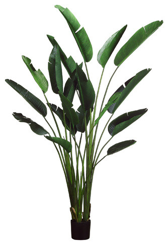 Silk plants direct bird of paradise plant pack of 2 tropical silk plants direct bird of paradise plant pack of 2 mightylinksfo