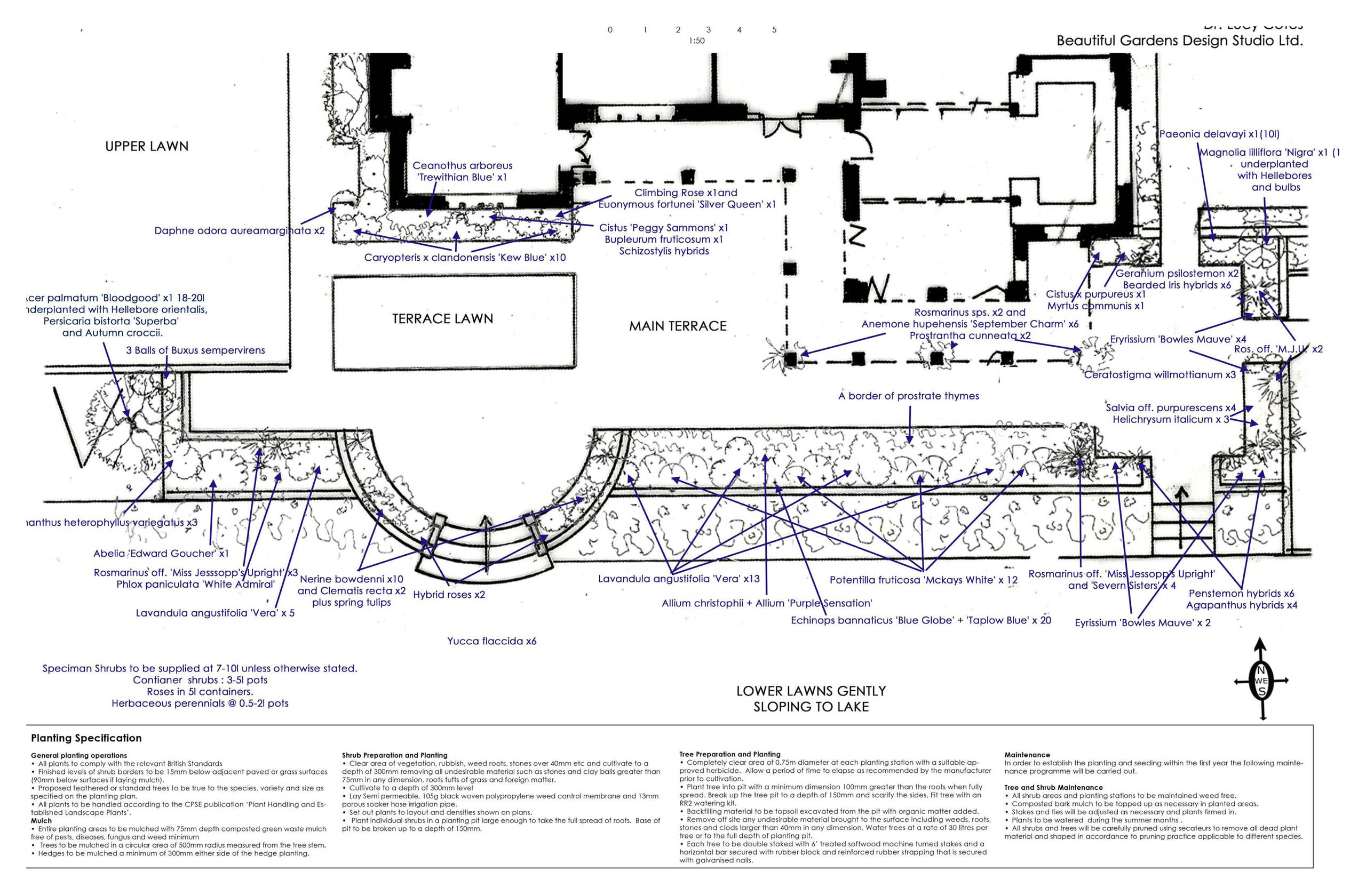 Planting plan for terrace area