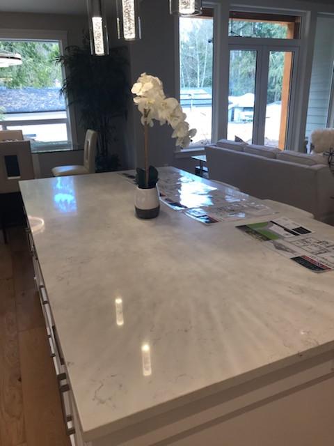 Bianco Gioia Quartz Countertops