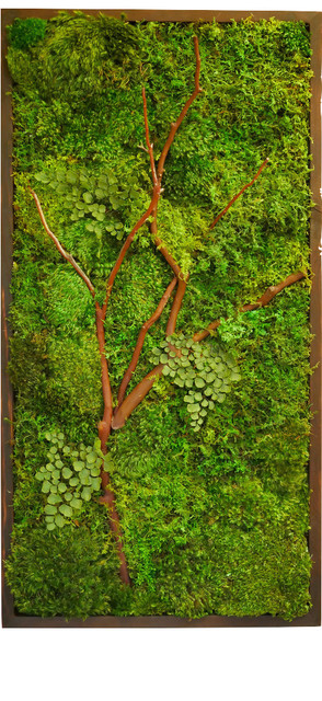 18x36 Quot Moss Wall Art With Manzanita Branches Rustic