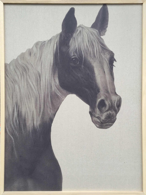 Wall Decor Painting Indian Horse Ii.