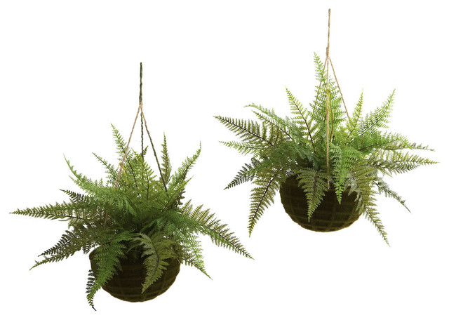 Indoor/Outdoor Leather Ferns In Mossy Hanging Baskets, Set Of 2 Tropical  Artificial