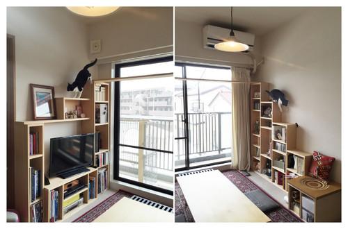【Houzz】猫と人の幸せな暮らし:「福を招く猫」千葉ちゃんと「猫と建築社」の日常 5番目の画像