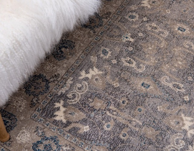 Transitional Linz Area Rug Contemporary Area Rugs By Rugpal Houzz