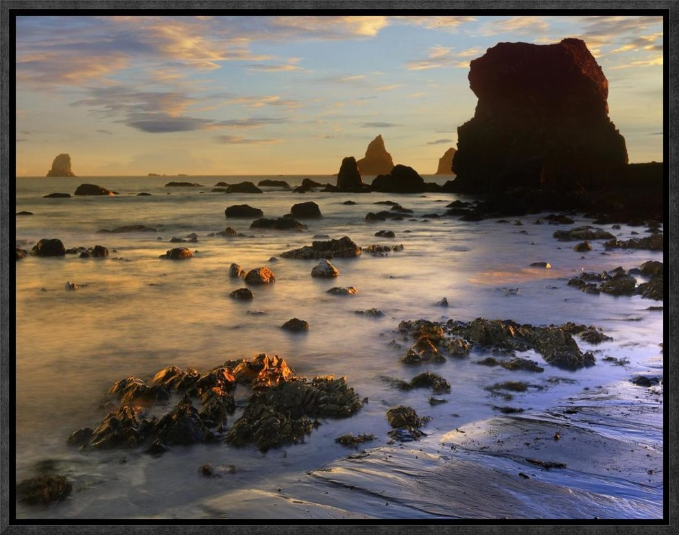 Seastacks Lone Ranch Beach Oregon By Tim Fitzharris 17x13 Beach Style Prints And Posters By Global Gallery