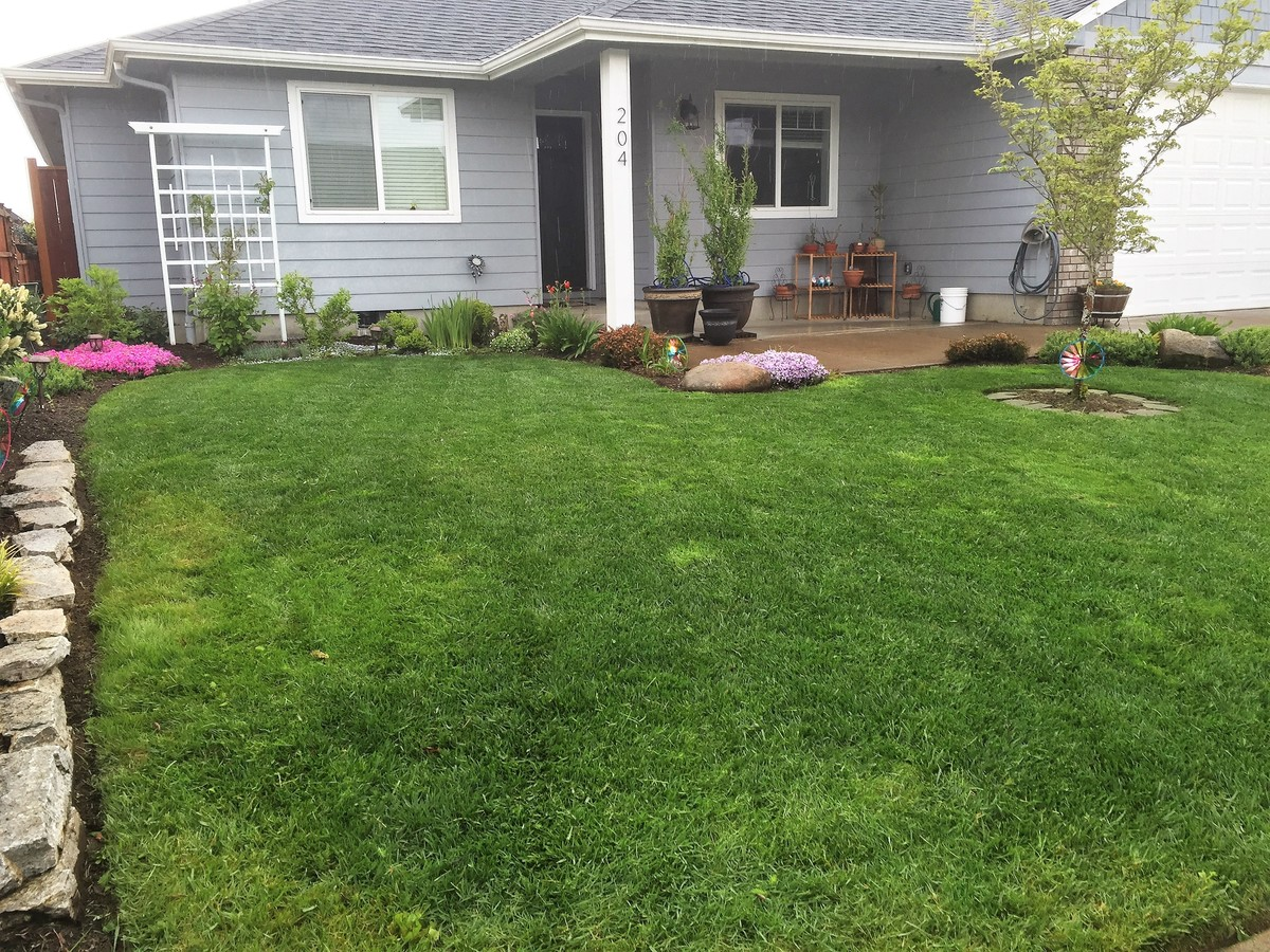 Reviews of hammer landscape maintenance eugene or us for Houzz pro account cost