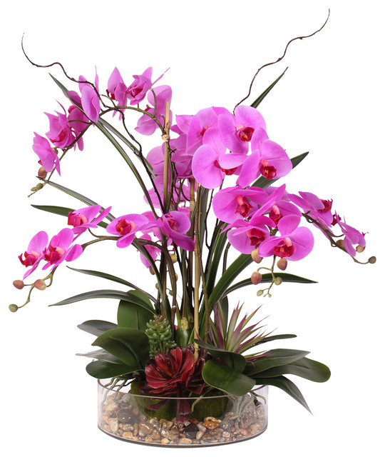 4ce6e16a35 Real Touch Purple Phalaenopsis Orchid, Succulents and Natural Rocks in  Glass Pot - Contemporary - Artificial Flower Arrangements - by JENNY SILKS