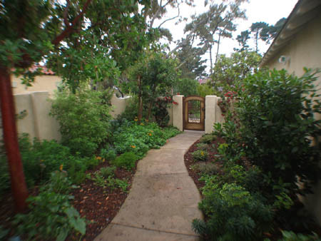 This is an example of a mediterranean landscaping in San Francisco.