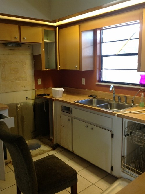 Updated Kitchen for this 80's Rancher