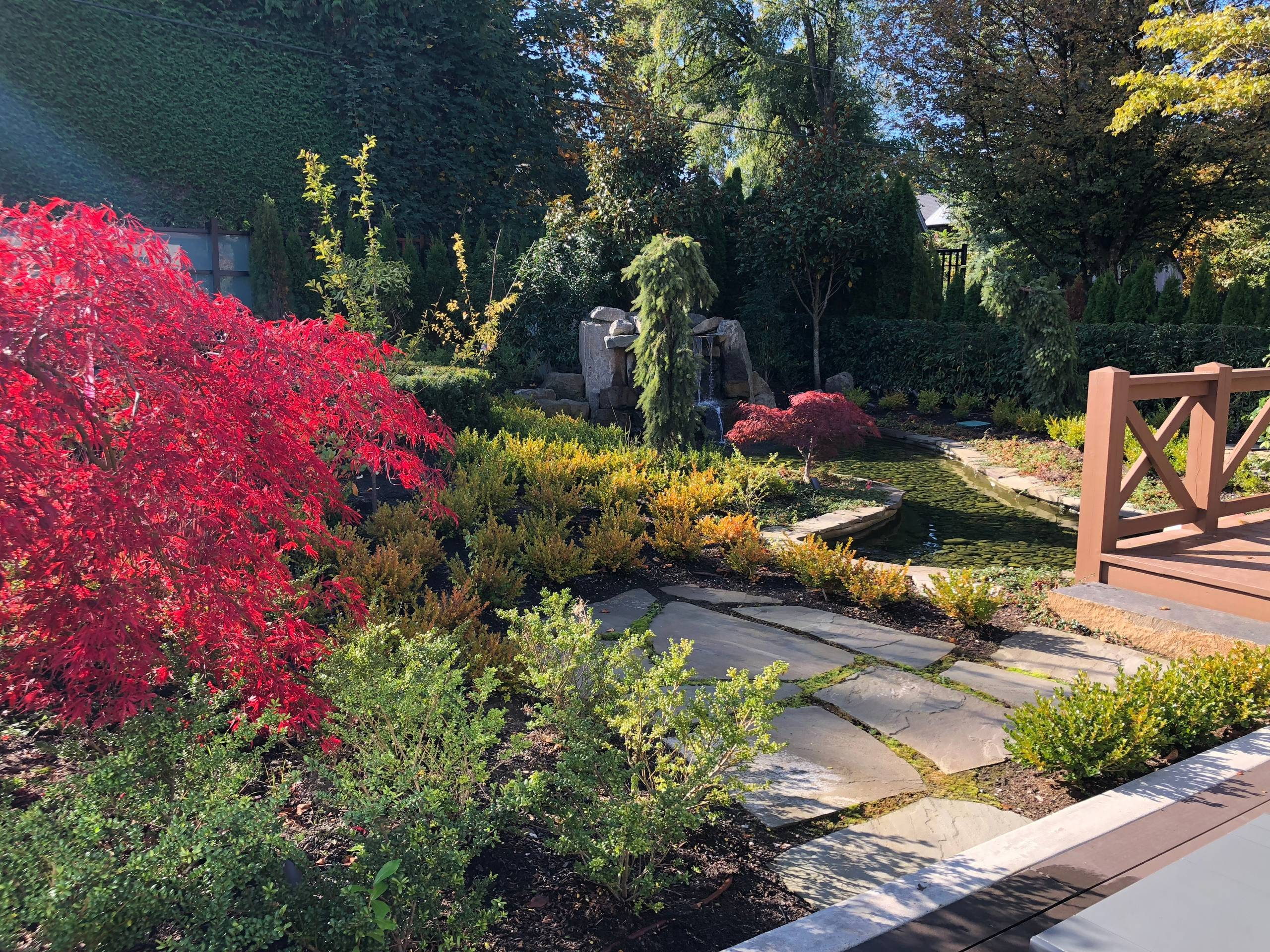 Classical Water Garden in Shaughnessy