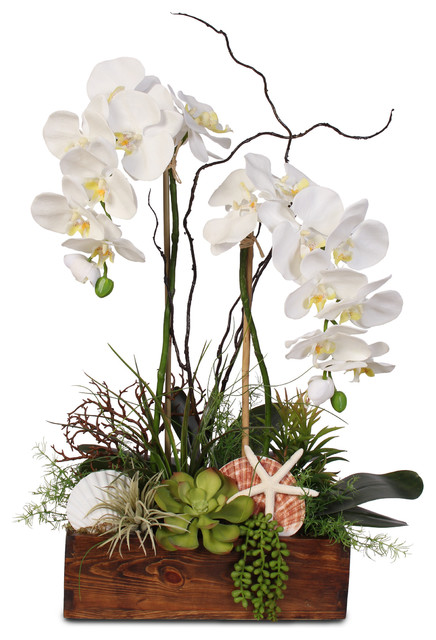 White Real Touch Phalaenopsis Orchid, Seashells and Succulent in Wooden Planter