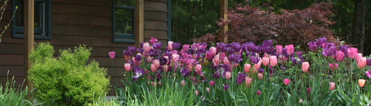 Bloom Landscape Design And Fine Gardening Service   New Paltz, NY, US 12561
