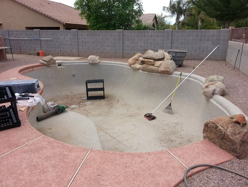 Inspiration and help sought - turning a 12,400 gal pool into a pond.