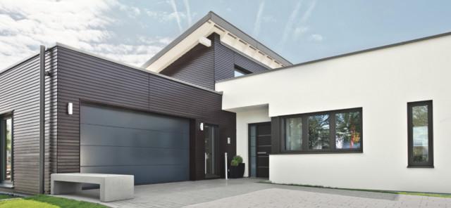 Einfamilienhaus mit doppelgarage modern  Eingang & Garage