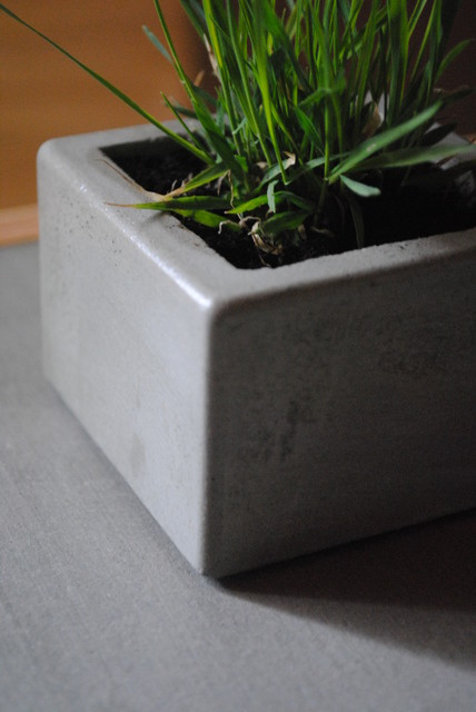 Fmc Design Concrete Planter View In Your Room Houzz