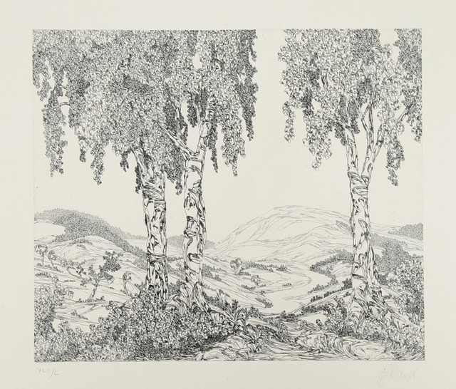 1000  images about Art: Drawing and Etching, B & W on Pinterest ...