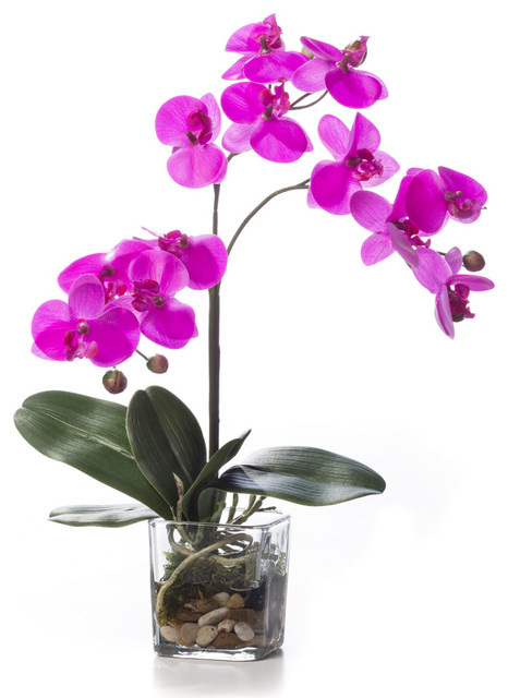 faux orchid accent fuchsia