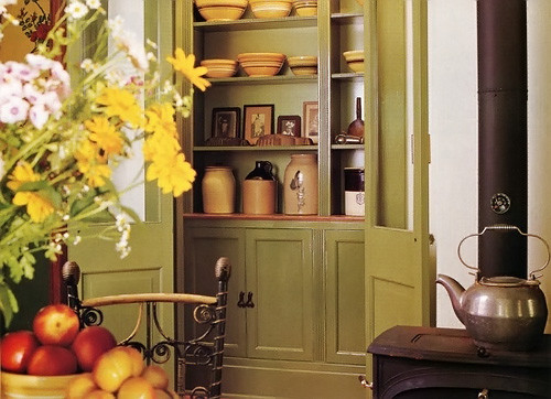 green pantry traditional kitchen