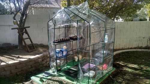 Is this inexpensive big lots greenhouse worth buying for Walk in greenhouse big lots