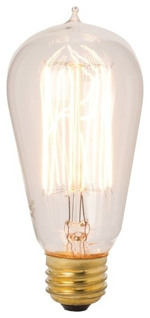 Dimond Home Edison Style 40 Watt Exposed Filament Bulb Traditional Incandescent Bulbs By