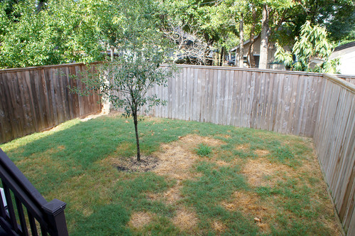 Transforming Your Townhouse Backyard!
