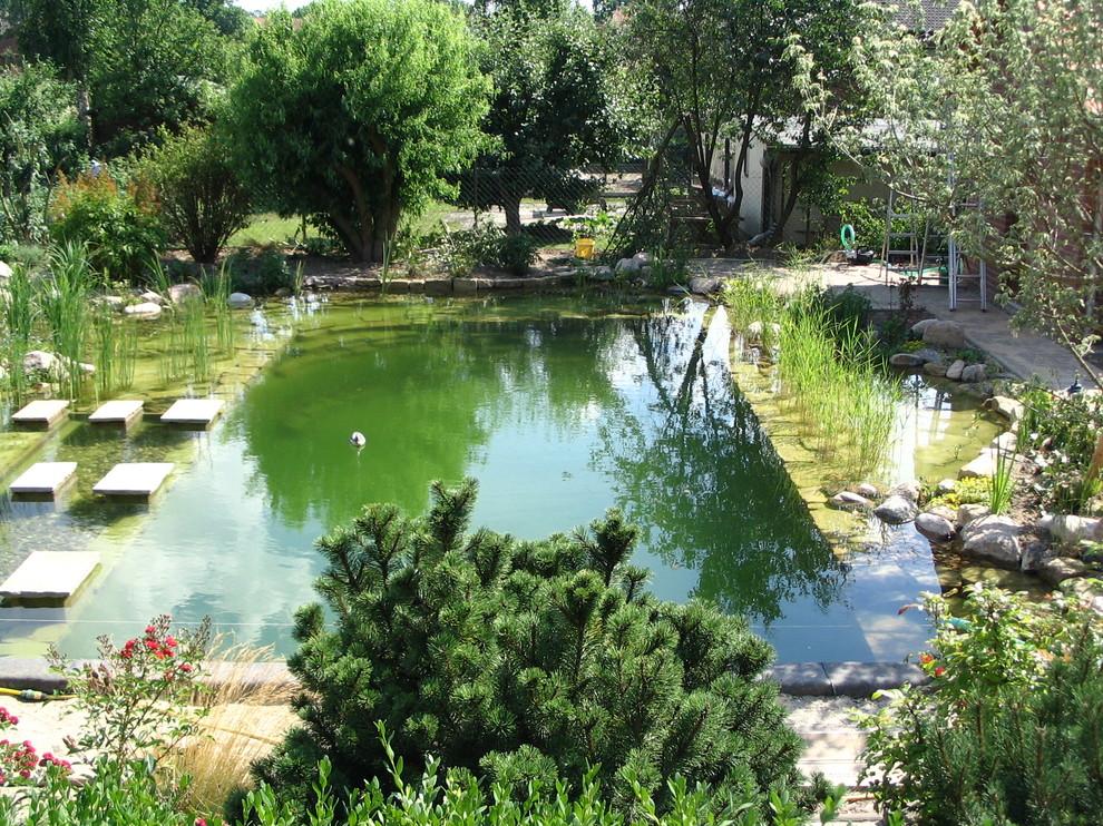 Naturpool/Gartenteich