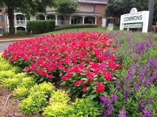 Annual flower beds on commercial properties. Beautifully maintained grounds are our specialty