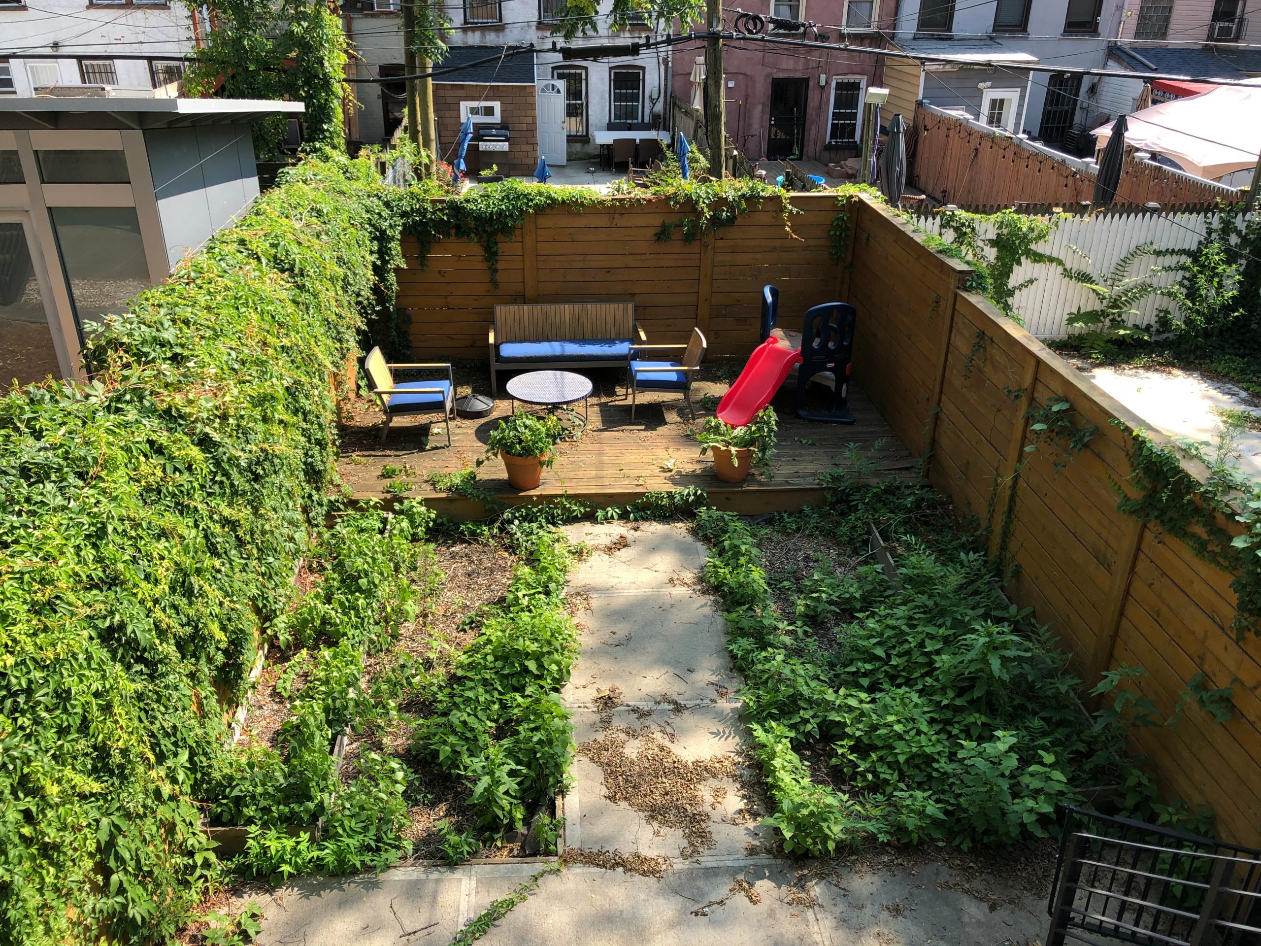 Bedstuy family backyard