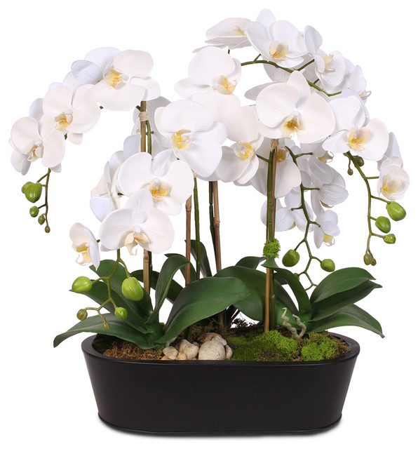 Real Touch White Phalaenopsis Orchids With Oval Metal Planter Transitional Artificial Flower Arrangements By Jenny Silks
