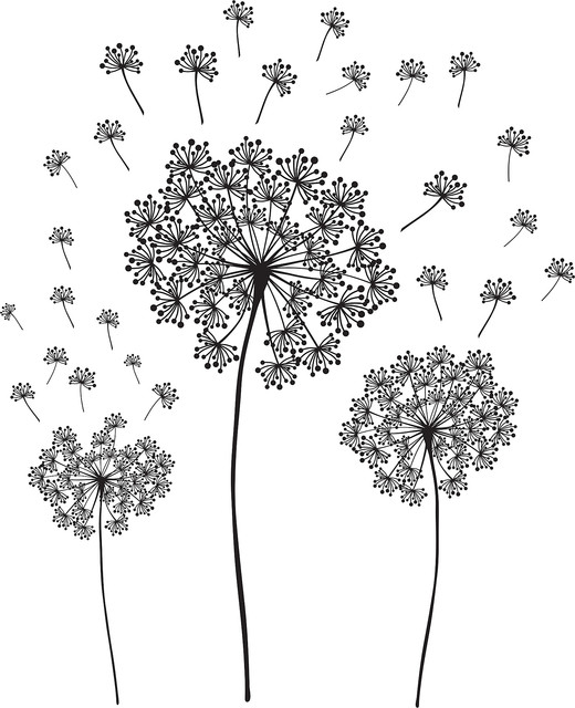 Dandelion Wall Art Decal Kit Contemporary Wall Decals Part 35