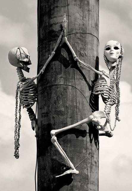 Mardi Gras Skeletons New Orleans La Fine Art Black And