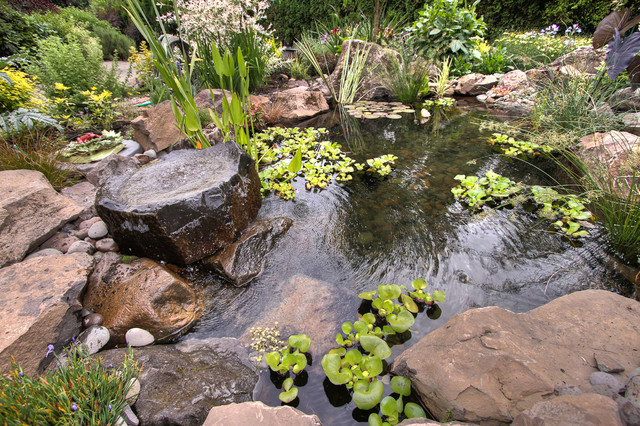 Natural pond traditional portland by paradise for Natural fish pond