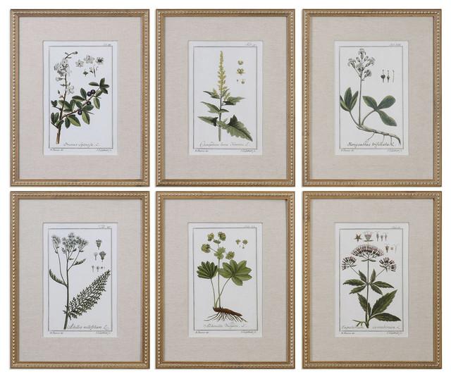 Green Floral Botanical Study Art Prints, Gold.