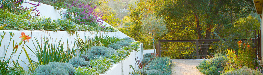 Bosler Earth Design · Landscape Architects and Designers - Bosler Earth Design - Los Angeles, CA, US 90056