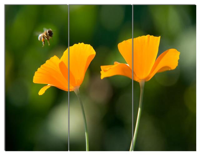 shop houzz design art usa orange flowers and flying bee. Black Bedroom Furniture Sets. Home Design Ideas