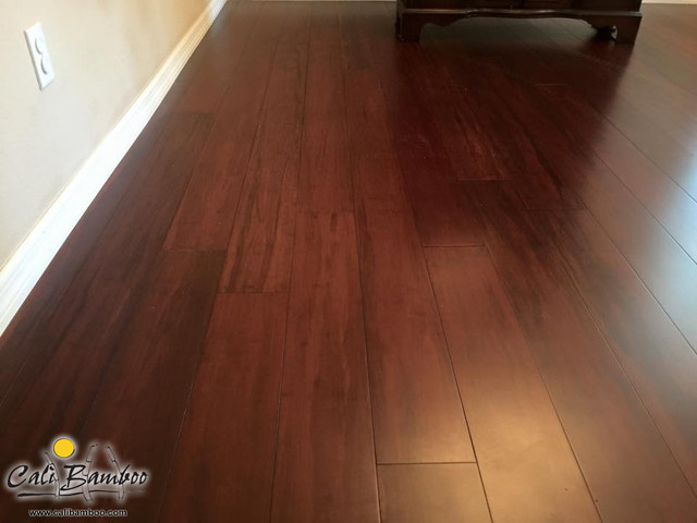Cognac Fossilized® Bamboo Flooring - Valrico, FL traditional