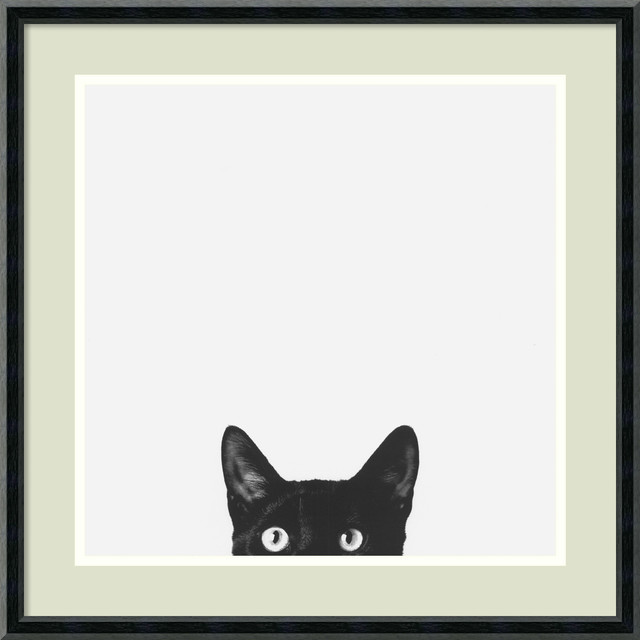 Curiosity  Framed Print by Jon Bertelli ...  sc 1 st  Houzz : wall art and posters - www.pureclipart.com