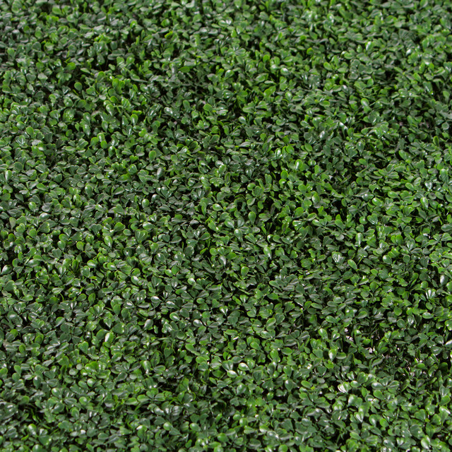 Ranka Usa Boxwood Greenery Panel 40 Quot View In Your