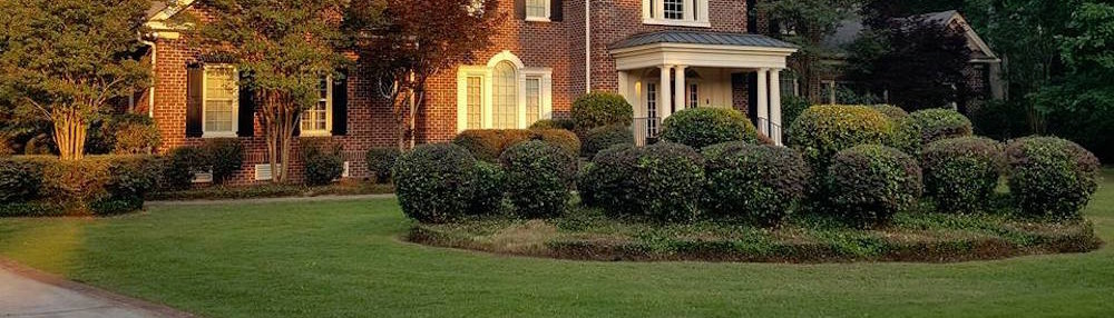 - Going Green Lawn Care & Landscaping - Lexington, SC, US 29072