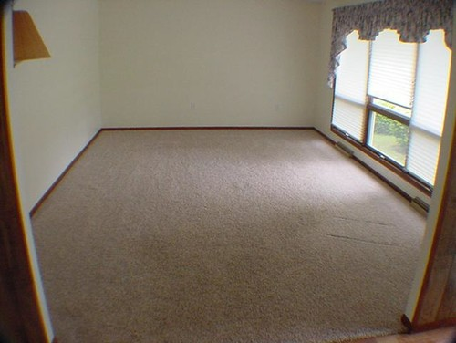 Large Living Room Light Carpet One Wall Is All Window