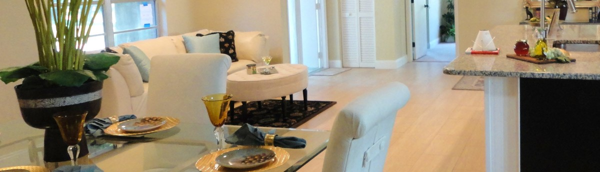 Staging By Peggy St Petersburg Fl Ga Us 33743
