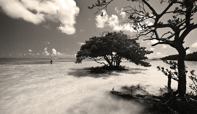 Young fisherman annes beach florida keys fine art black and white photography