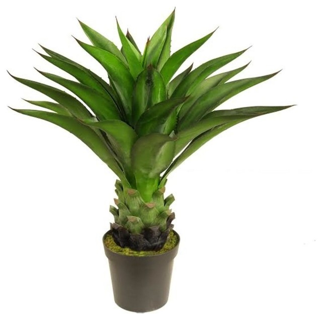 30 5 Decorative Potted Artificial Green Agave Americana Succulent