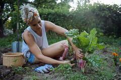 8 Erkenntnisse, warum gärtnern uns glücklich macht