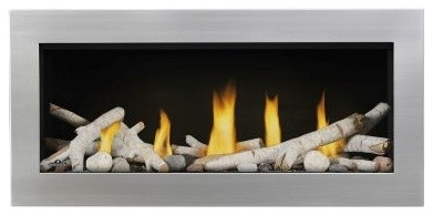 Vector Lv38 Direct Vent See-Thru Gas Fireplace Package2.